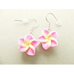 Hawaii_Blumen
