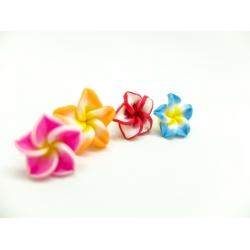 1 Paar Hawaii Blumen Blüten...