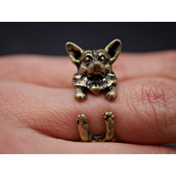 DOGGE RING IN BRONZE ODER...
